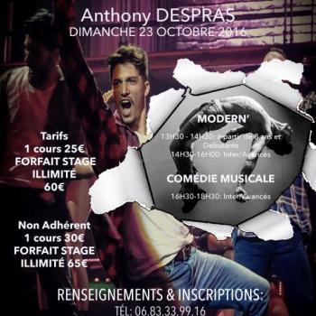 Stage Anthony DESPRAS - Centre de danse Nilda Dance - Montceau-les-mines
