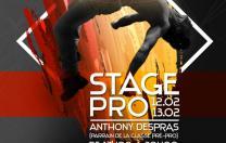 Stage Pro avec Anthony DESPRAS au Centre de Danse Nilda Dance - Montceau-les-mines